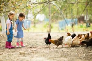Kinderen die op het platteland opgroeien, hebben minder last van allergieën dan stadskinderen.