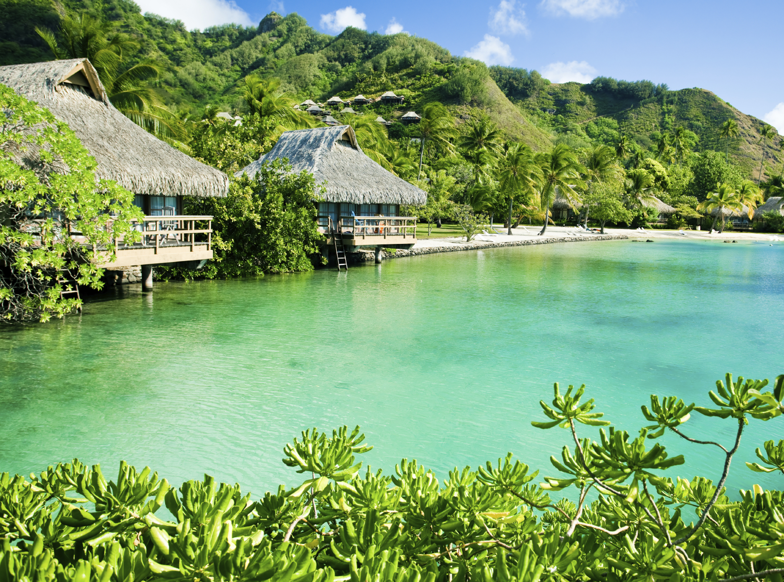 Over water bungalows and a green lagoon