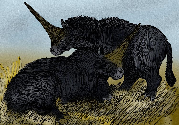 Elasmotherium_sibiricum_black