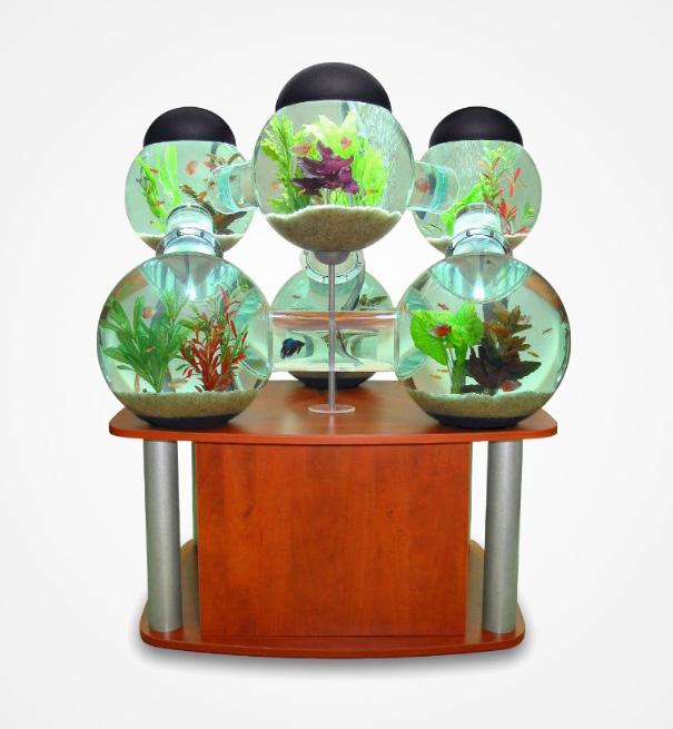 creative-aquariums-16-2