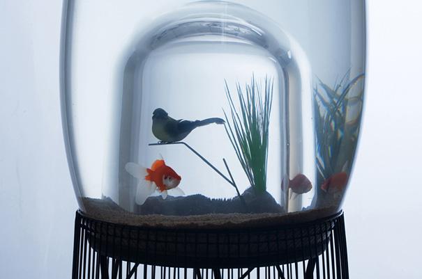 creative-aquariums-18-1