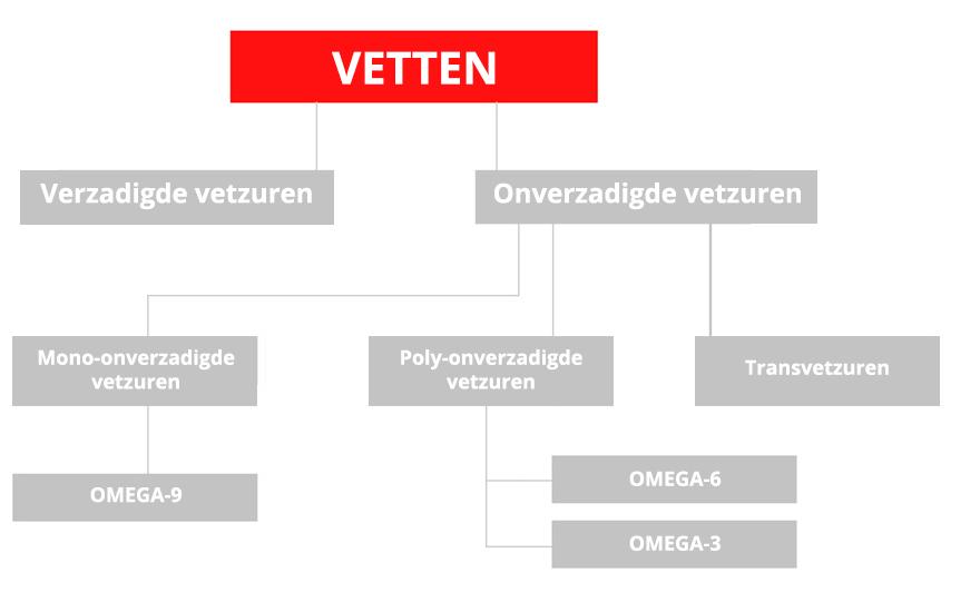 Bron: Vigez – Vlaams Instituut voor Gezondheidspromotie en Ziektepreventie