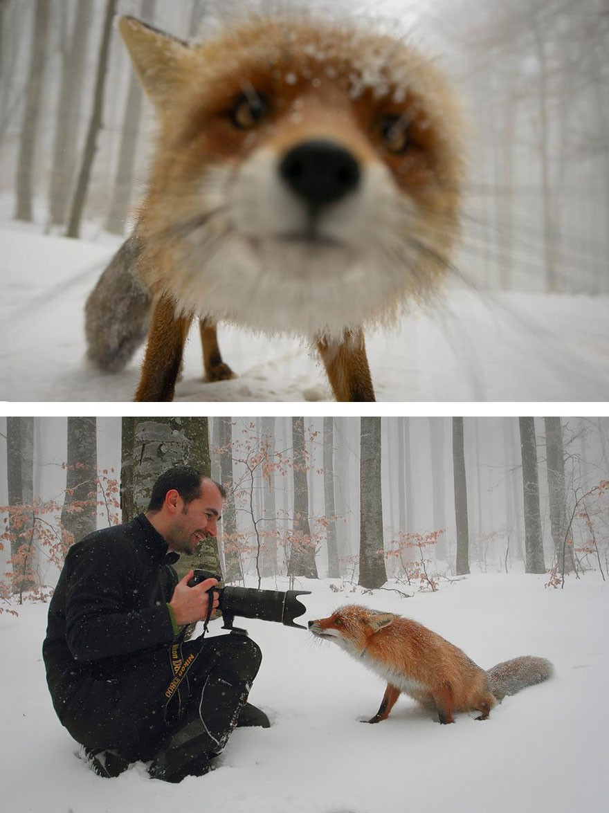 behind-the-scenes-photography-1-57727a1443af0__880