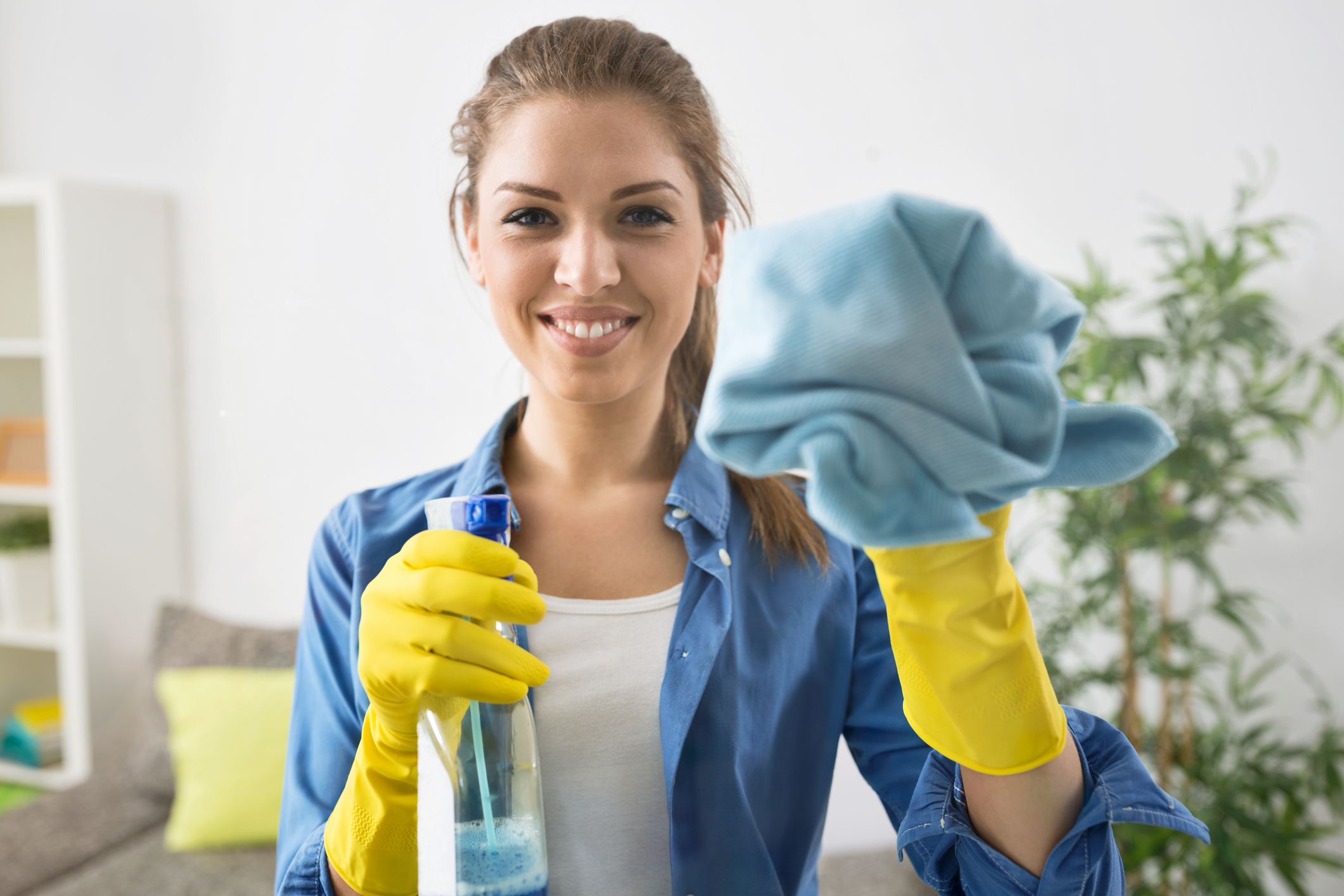 Attractive Woman Washing the Window