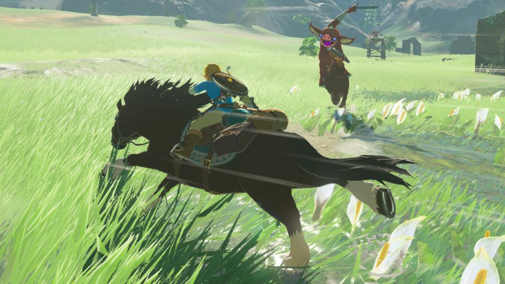 Link kan paarden temmen en berijden... maar dat kunnen de bokoblins ook.