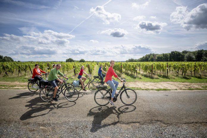 Onze fietstocht leidt ons langs verleidelijke wijngaarden, imposante kastelen zoals de Waterburcht van Horst en verborgen pareltjes in Leuven. (foto's Lander Loeckx/Visit Leuven)©Lander Loeckx