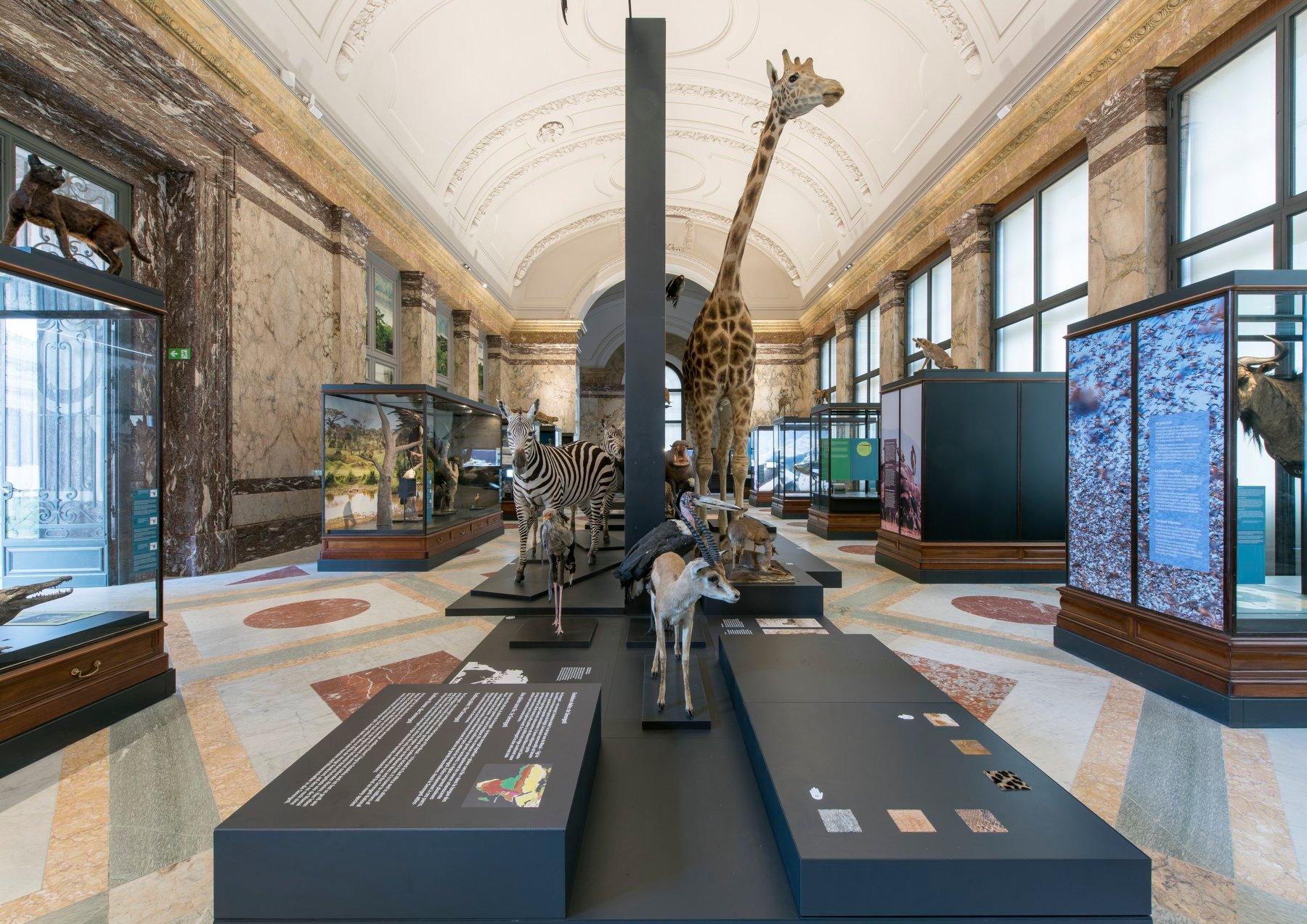 Africa Museum Tervuren