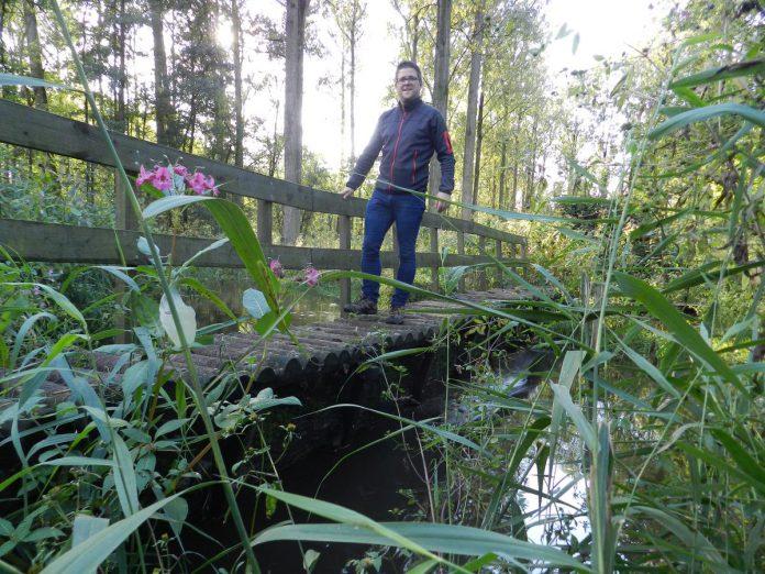 De knuppelpaden in natuurgebied Lovenhoek loodsen je over de meanderende Molenbeek. (foto maf)